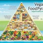 Vegan Diet Plan for Weight Loss Fast