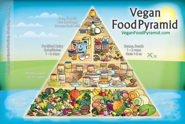 Vegan Diet Plan For Weight Loss Fast Seventh Day Adventist Diet